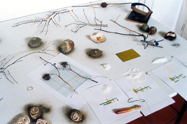 Table with objects (1998 - ongoing)